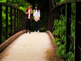 「数馬峡谷~鳩ノ巣渓谷」東京の終着駅トレッキング!|東京都|トラベルjp<たびねす>