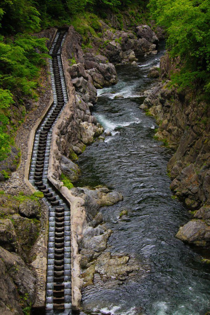 白丸ダムと魚道