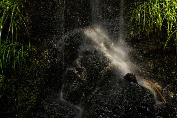 払沢の滝アクセス方法
