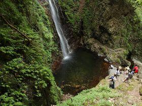 うの花ドーナツが絶品!東京唯一の百名瀑「払沢の滝」|東京都|トラベルjp<たびねす>