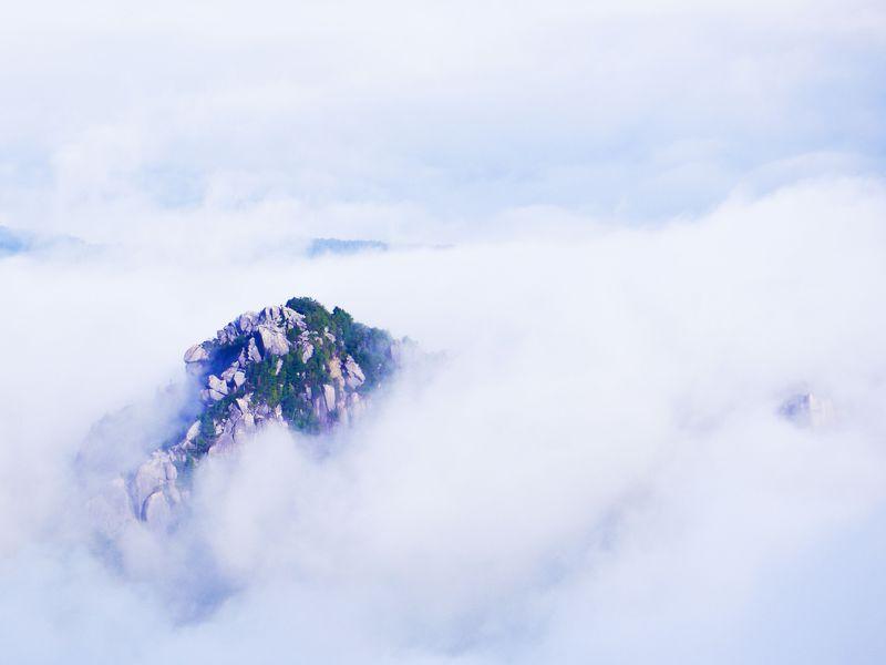 雲海の要塞「瑞牆山(山梨)」は思わず絶景と言いたくなる!