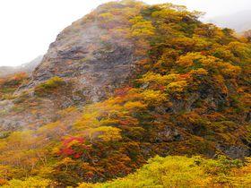 黄金色の三角錐「北岳バットレス」の紅葉は想像を超えた感動風景!