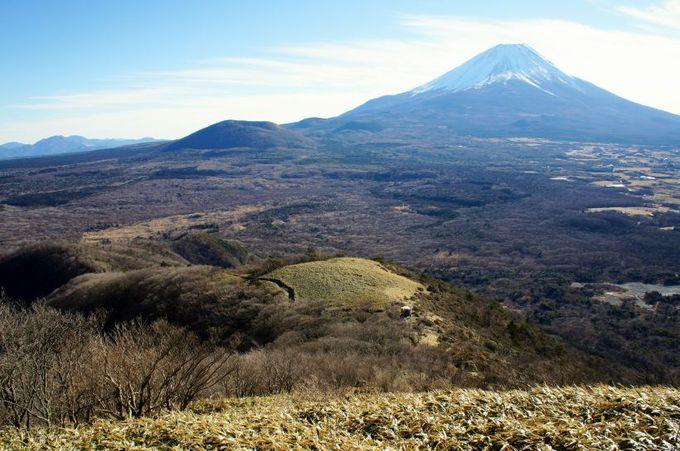 富士山最大の側火山「大室山」、樹海も必見!