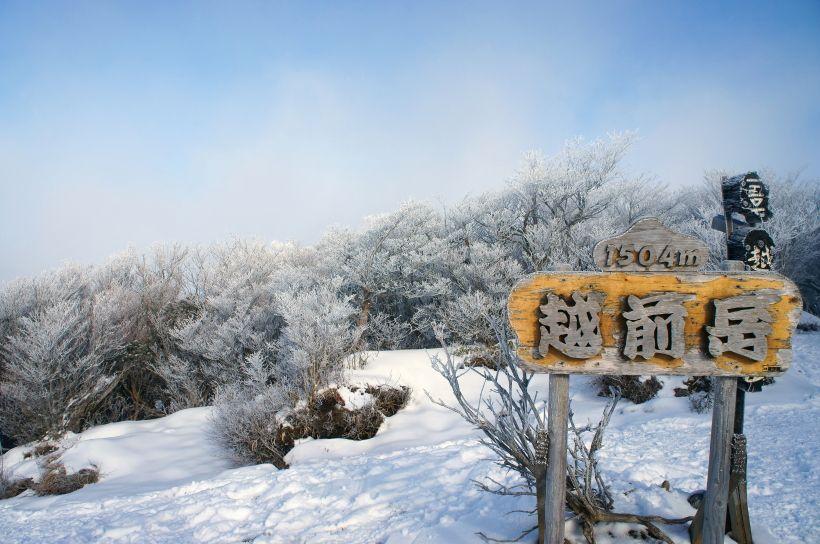 気軽に絶景が楽しめるハイキングコース
