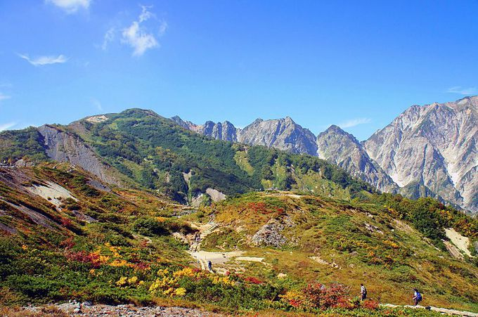 荒々しくも美しい稜線!唐松岳〜不帰ノ嶮(かえらずのけん)