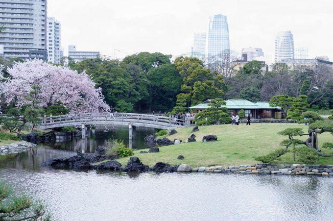 東京観光の要所!抜群の立地も魅力!