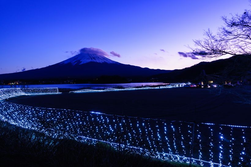 冬限定の富士五湖イルミ!大石公園「光のナイアガラ&ウェイブ」(山梨)