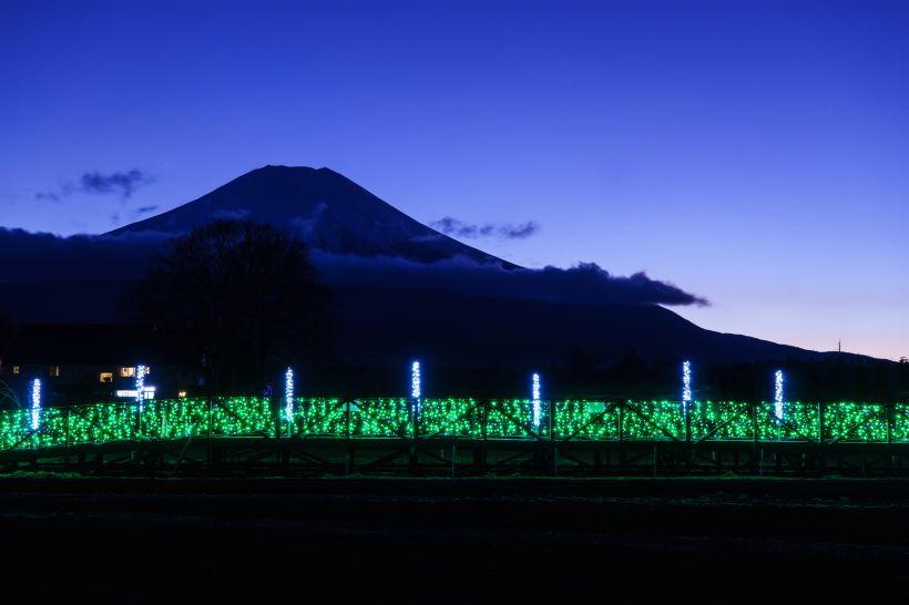 富士五湖最大級!山中湖アートイルミネーション「FANTASEUM」