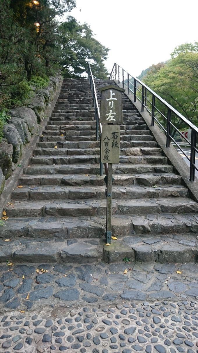 800段の階段を上ってお参りしよう、滋賀「立木観音」!