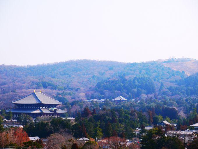 【第2位】360度のパノラマ!奈良県庁に穴場の展望台を発見