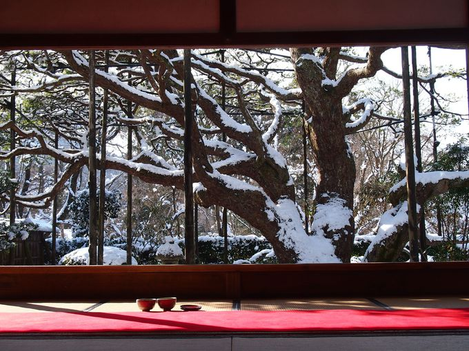 白雪の絵画、宝泉院