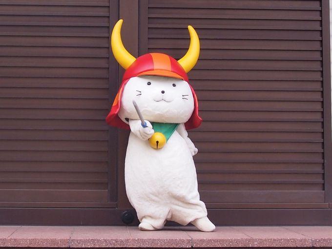 彦根城の大人気アイドル!ひこにゃん