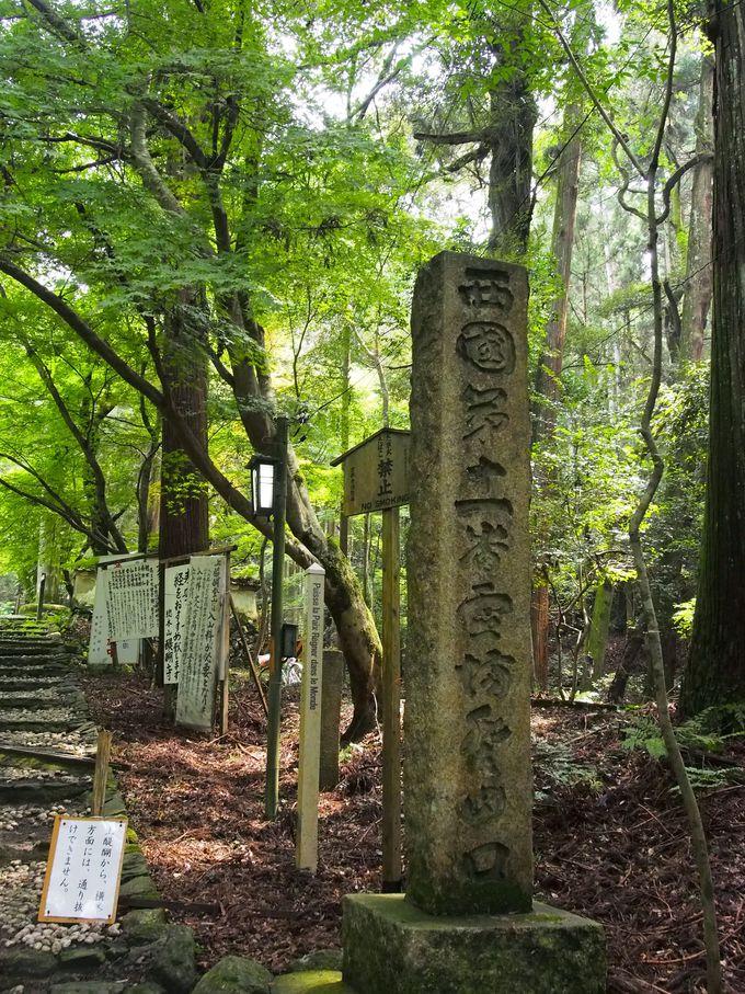 上醍醐への路は西国第十一番霊場への路!