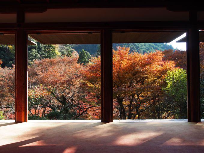 石水院・切り取る秋の風景画