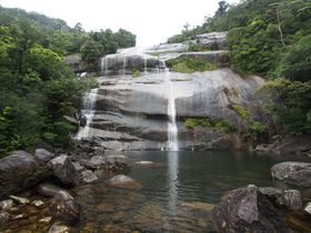 南国・屋久島の魅力が勢ぞろい!「蛇之口滝ハイキングコース」