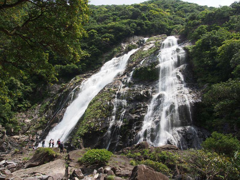 世界自然遺産「屋久島」パワースポット、滝巡り!