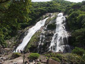 世界自然遺産「屋久島」パワースポット、滝巡り!|鹿児島県|トラベルjp<たびねす>