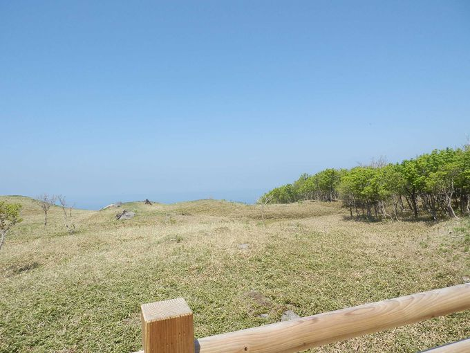 どこまでも続く青い海・・・