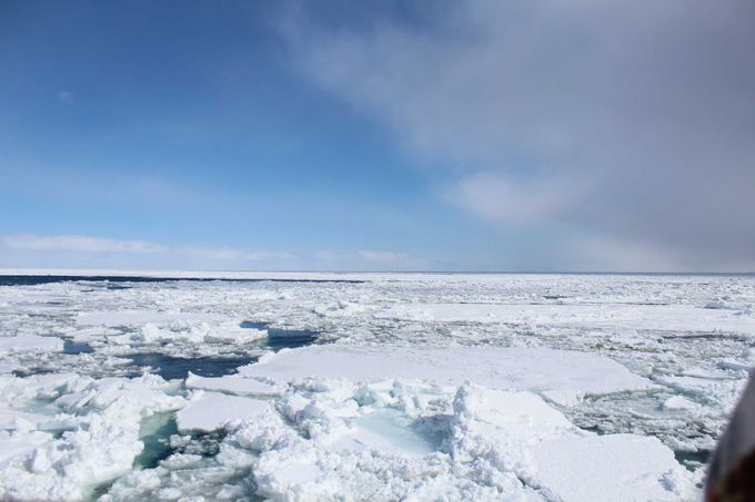 「流氷」が水平線まで続いています!