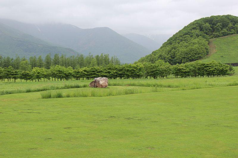 庭好き必見!世界一に認定された「十勝千年の森」へようこそ♪