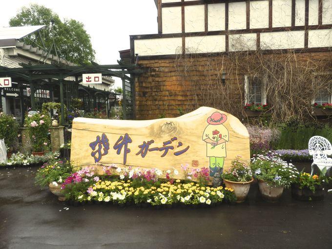 紫竹おばあさんがトレードマークに!!