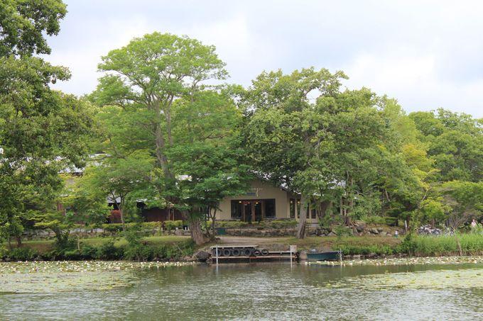 湖畔の「ターブル・ドゥ・リバージュ」