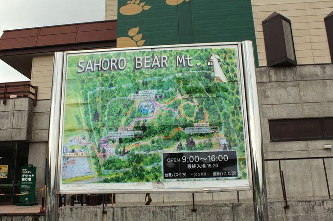東京ドーム約3.2個分の「エゾヒグマ」のテーマパーク