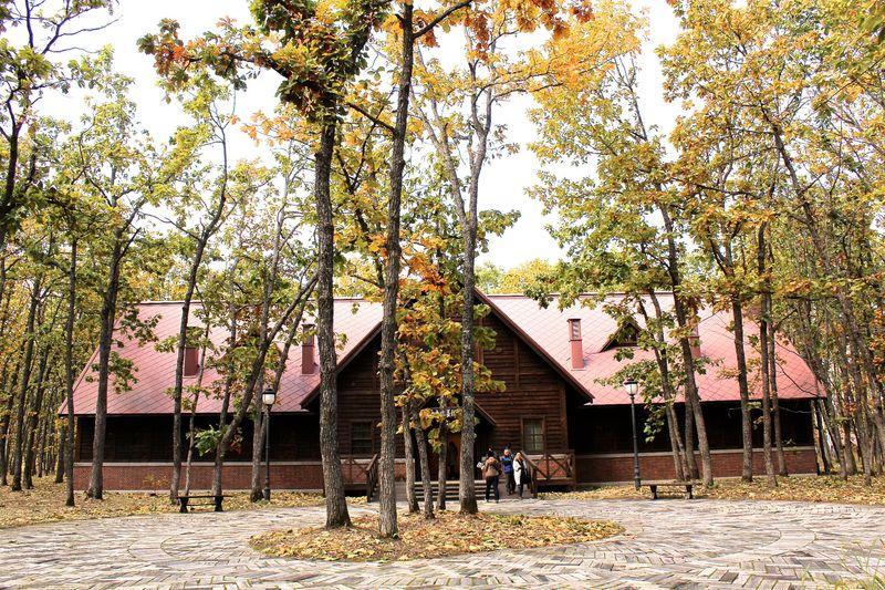 あの六花亭が企画運営!柏林の中にある北海道「中札内美術村」