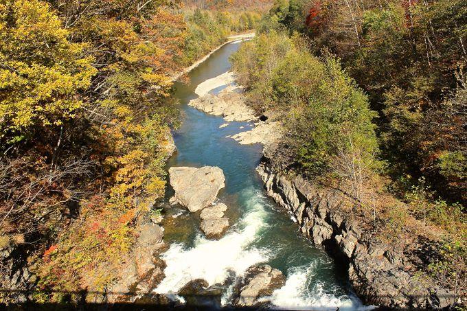 美しい自然「札内川」