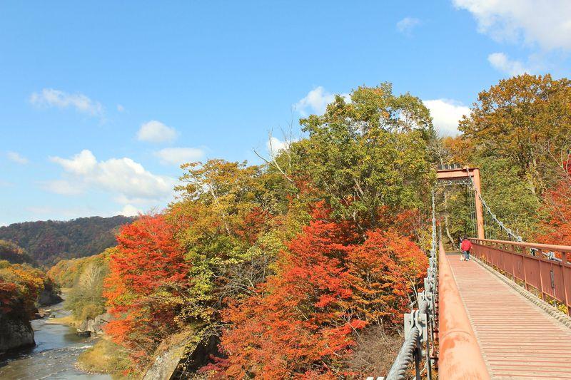 二つの橋から紅葉鑑賞!メロンも美味「夕張滝の上自然公園」
