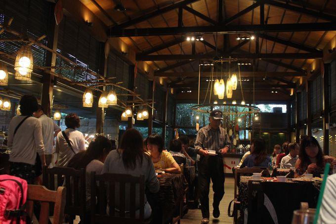 レストランで多国籍料理を楽しもう!