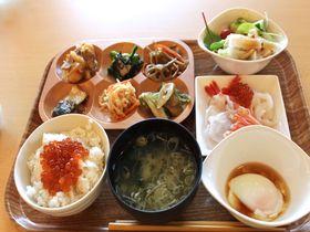 モール温泉&お刺身食べ放題朝食!北海道・十勝川温泉「観月苑」|北海道|トラベルjp<たびねす>