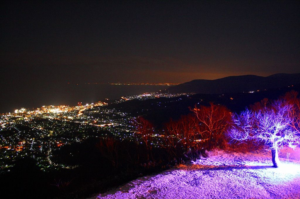 小樽天狗山「青の天狗桜」