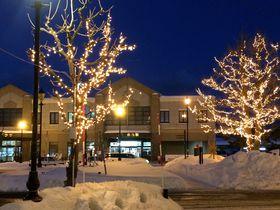 2016~2017年「小樽・余市ゆき物語」夜の街歩きを楽しもう!|北海道|トラベルjp<たびねす>