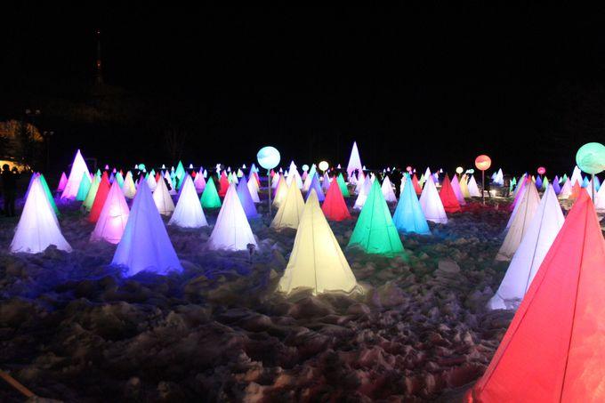 十勝川白鳥まつり「彩凛華」は光と音のショー!