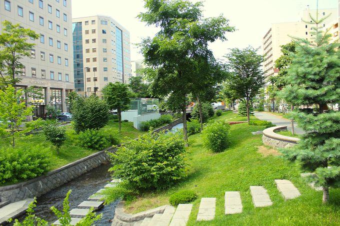 創成川公園がまるで庭園!