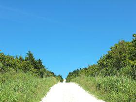 360度絶景!北海道「宗谷丘陵」の白い道と日本一のウインドファーム
