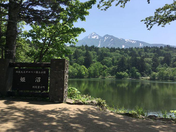 """絶景""""逆さ富士""""や高山植物も!利尻島「姫沼」は初夏がおすすめ"""