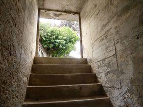 戦争を語り継ぐ遺跡「戦闘指揮所」を鹿児島県・喜界島に訪ねる