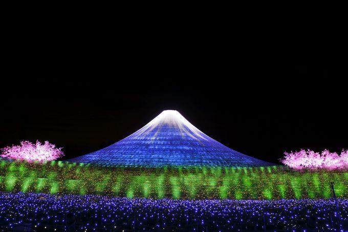 自然と調和した選出に注目!西日本の大人気イルミネーション なばなの里「冬華の競演」