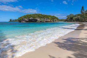 観光局スタッフに聞く!「いまニューカレドニアに行くべき」ポイント5選