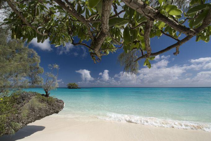 オーガニックのバニラが有名な「リフー島」