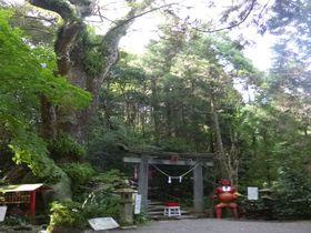 鬼が造った階段?涙で出来た石?宮崎「東霧島神社」は九州随一のパワースポット!|宮崎県|トラベルjp<たびねす>