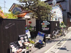 直島の猫カフェ「にゃお島」でご当地カレーを食べて猫と遊ぼう!