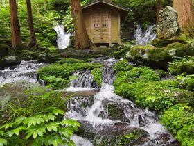 神秘のパワースポット「胴腹の滝」鳥海山の伏流水が湧く二連の滝