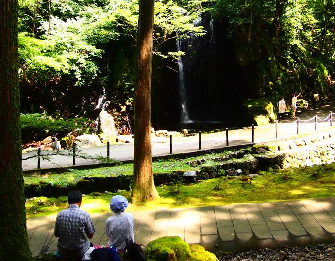 寂光苑「玲瓏の滝」は、森林と滝でダブルの癒し効果!