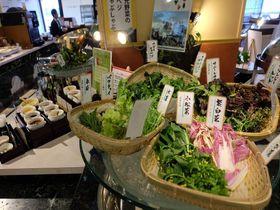 朝食がスゴい!朝ベジに充実和食「ホテル東日本宇都宮」ルームサービスもお勧め