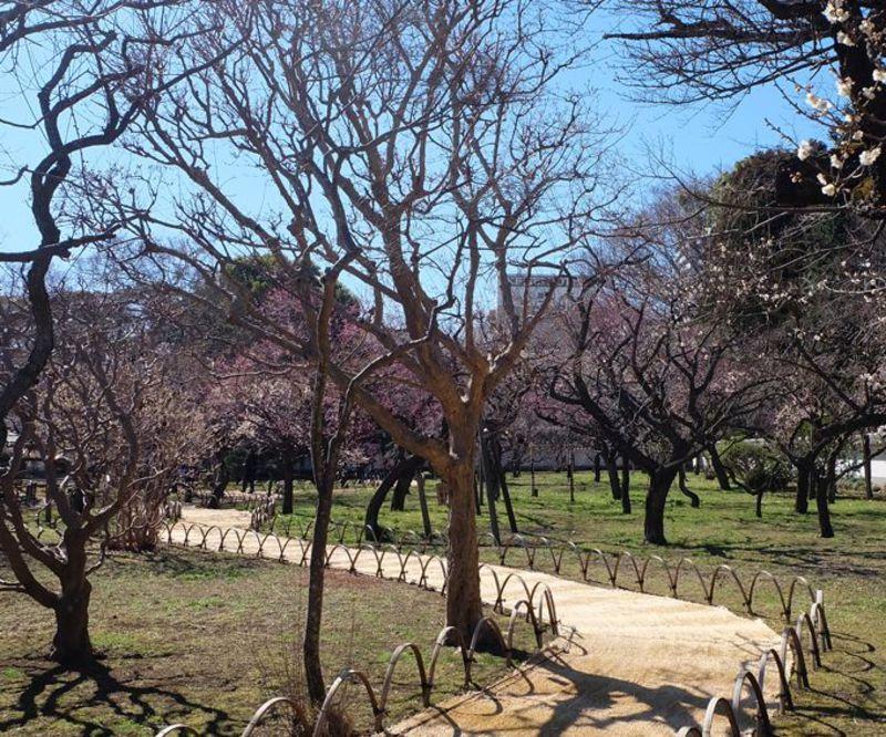 水戸観光、弘道館散策にお勧め「水戸京成ホテル」リニューアルでより快適に!