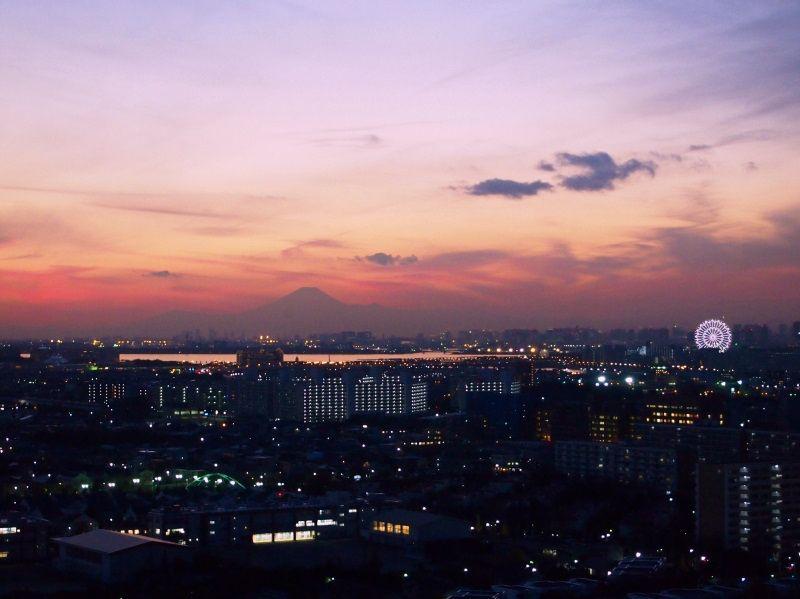 眼前にTDL、富士山&スカイツリー絶景!エミオン東京ベイは天然温泉付
