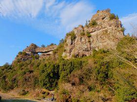 大分・陸の軍艦島「耶馬渓」の穴場絶景にネモフィラコラボも!